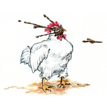 Muddy Rooster by Kit Colman