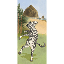 """Zebra"""
